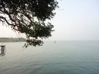 Venise aquatique