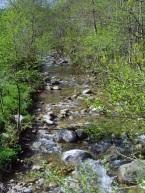 Ruisseau Dornas
