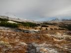 Montagne Esja et forêt