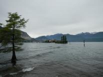 Paysage Isola Madre arbre flottant