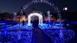 nabana-no-sato-winter-flowers-light-festival-kuwana