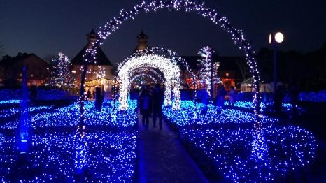 nabana-no-sato-winter-flowers-light-festival-kuwana