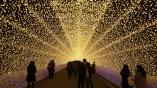 nabana-no-sato-winter-light-festival-tunnel